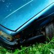 Знакомство с родителями девушки закончилось разбитой машиной в кустах и уголовным делом