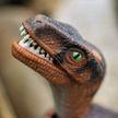 Бабушка и дедушка после года разлуки встретились с «динозаврами», а хотели с дочкой и внучкой