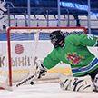 Знаменитые участники Рождественского турнира провели мастер-класс для юных хоккеистов