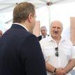 Лукашенко поручил запретить вывоз семян рапса из Беларуси