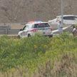 В Канаде самолет приземлился на автотрассе