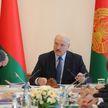 Итог президентского совещания по АПК Витебской области: никаких надстроек и возможность приватизации хозяйств