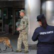 Сообщения о минировании пяти гостиниц, ж/д вокзала и аэропорта в Минске оказались ложными: возбуждено уголовное дело