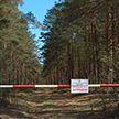 В регионах Беларуси вводят временный запрет на посещение лесов