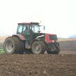 Посевная началась в трёх районах Витебской области: помимо зерна, ставку делают на кукурузу и горох