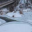 Редкое природное явление обнаружили на реке под Брестом