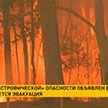 Пожары охватили Австралию: в Сиднее объявлен день «катастрофической» опасности