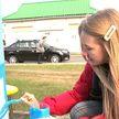 Добровольцы и активисты в Минске участвуют в акции благоустройства дворов