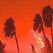 В Калифорнии продолжаются лесные пожары