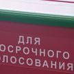 Досрочное голосование: явка избирателей в Гомельской области – более 50%