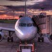 Обездвиженные алкоголем пассажиры не дошли пару метров до самолета