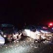 Три человека погибли в автомобильной аварии в Гомельском районе
