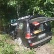 На трассе в Лельчицком районе Toyota выехала в кювет и перевернулась