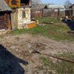 26-летнего парня закопали живьем. Расследование жестокого убийства в Полоцке завершено