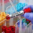 В ВОЗ заявили, что индийский штамм коронавируса в два раза заразнее