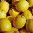 «Никому не позволено на этом наживаться!»: Президент возмутился резким ростом цен на лимоны, имбирь и маски