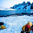 Загадочные смерти на американской исследовательской базе в Антарктиде