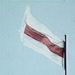 Бело-красно-белый флаг используют участники протестного движения: с какими историческими событиями связана эта символика?