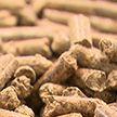 В Житковичском лесхозе открылось пеллетное производство