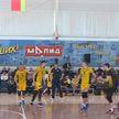 В мужском чемпионате Беларуси по волейболу проходит финальная серия
