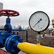 Белорусский профессор раскрыл, сколько должен стоить российский газ