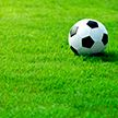 Выйдет ли БАТЭ в третий круг квалификации футбольной Лиги чемпионов?