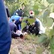 Авария в Гомеле: пьяный водитель вплавь пытался скрыться с места ДТП
