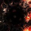 Ученые: личинки червей защитят людей от ВИЧ