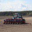 В Беларуси практически завершён сев яровых