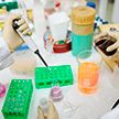 Коронавирус может передаваться от бессимптомных носителей в 70% случаев – ученые