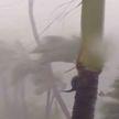 Ураган Дориан бушует в США: чрезвычайное положение объявлено в Джорджии