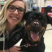 Собаке с ожогами подарили вторую жизнь, пересадив кожу рыбы (ФОТО)