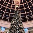 Открытие новогодней ёлки в Dana Mall: Дед Мороз, трио поющих пингвинов, «Полярная станция»