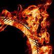 Неудачный прыжок каскадера через горящие кольца попал на видео