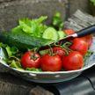 Почему нельзя есть огурцы 🥒  с помидорами 🍅 ?