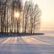 До -26°С прогнозируют в Беларуси 16 января