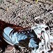 Задержаны подозреваемые во взрыве на пустыре в Заводском районе в Минске