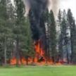В Калифорнии разбился легкомоторный самолет: все находившиеся на борту погибли