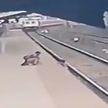 Ребенок шел по перрону и упал на рельсы перед поездом в Индии. Мальчика спас стрелочник