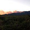 Лесные пожары охватили север Италии