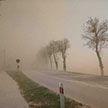 Песчаная буря из Африки дошла до Польши. Накрыло и западные области Беларуси