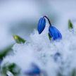 Зима 2019-2020 стала самой тёплой за последние 140 лет