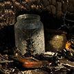 Пророчество деревенской гадалки. Мрачное предсказание исполнилось и привело к целой череде трагедий
