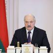 Лукашенко: Если откровенно говорить, то нынешняя Конституция точно «под президента»