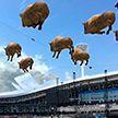 На открытии II Европейских игр можно будет увидеть десятки виртуальных зубров