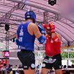 Сборная Беларуси по тайскому боксу завоевала 7 медалей на чемпионате мира