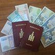 Монгольский чиновник-коррупционер бежал в ЕС через Беларусь. Его планам помешали брестские пограничники
