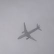 Из-за плотного тумана нарушено авиасообщение