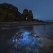 «Голубые слёзы»: необычное голубое свечение привлекло туристов со всего мира