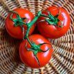 Что происходит с организмом, когда вы едите помидоры 🍅?